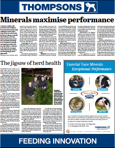 Minerals Maximise Performance